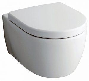 Test Toilette ohne Spülrand von Keramag