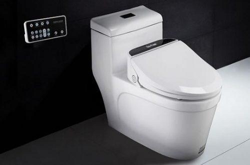 WC Sitz ohne Spülrand mit vielen Funktionen.
