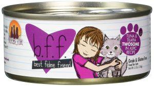 Der 8te Platz verdient sich Best Feline Friend Katzenfutter.