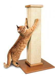 Der beste Kratzbaum für Katzen, ist für uns der von Smart Cat.