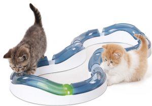 Das beste Spielzeug für Katzen ist die Spielschiene von Catit.